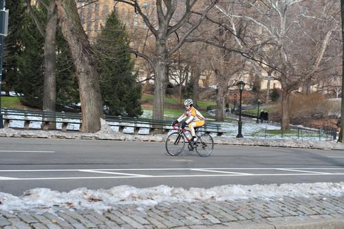 在纽约中央公园