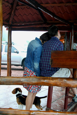 哥斯达黎加的十七个瞬间(续):关于爱情