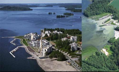 【绿色芬兰片段】水湖湖里的倒霉鱼