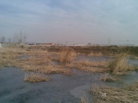 在北沙河支流回顾与反思