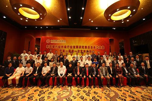 中国银行业协会行业发展研究委员会成立
