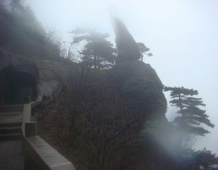 齐天乐·风雨黄山行