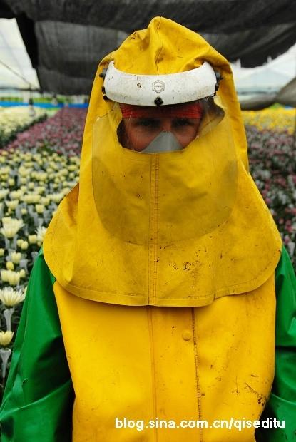 【哥伦比亚】麦德林,鲜花与男人