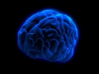 人算不如天算 之 电脑中的微型大脑