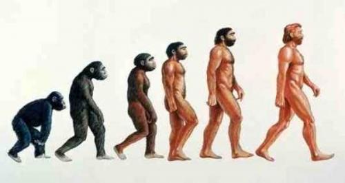 兔年要转化,猿人须进化