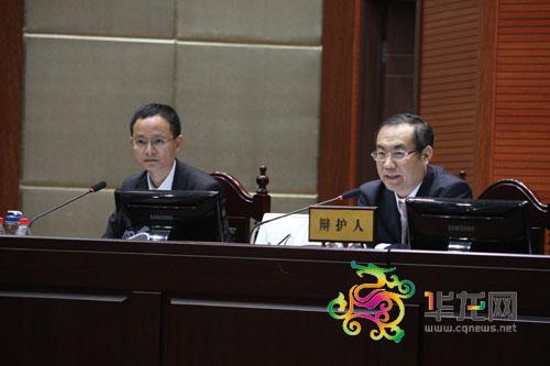 戳穿重庆追诉李庄漏罪案闹剧之杨学林律师辩护词