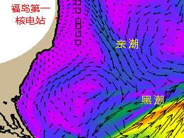 """福岛""""核污水""""会流向哪里?"""