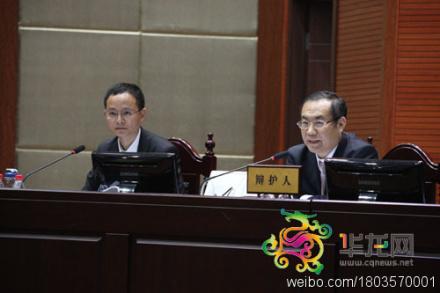 杨学林律师李庄案一审辩护词