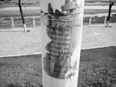 西丰县城边的寇河公园沿途的路灯杆上,仍贴有谩骂赵俊苹的传单。本报记者 王晨 摄