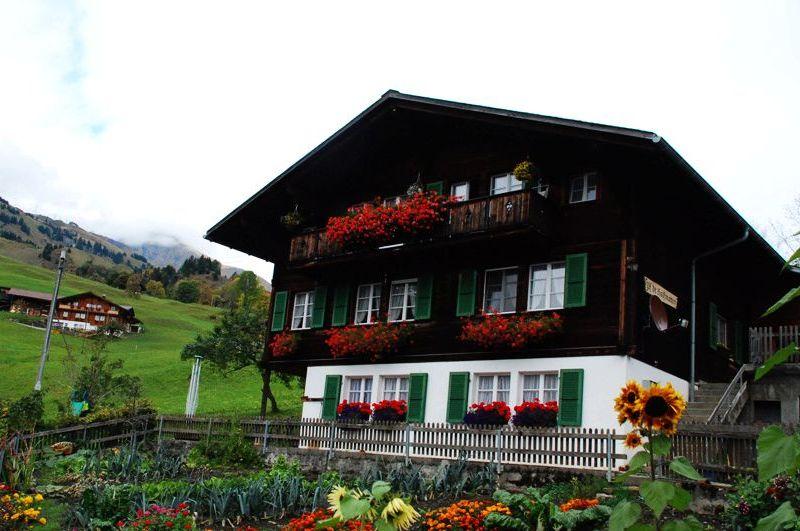 阿尔卑斯山的思念