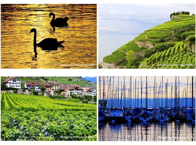 【瑞士】莱芒湖,诗情画意30幅