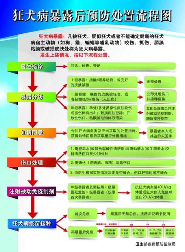 卫生部发布了《狂犬病暴露后预防处置流程图》