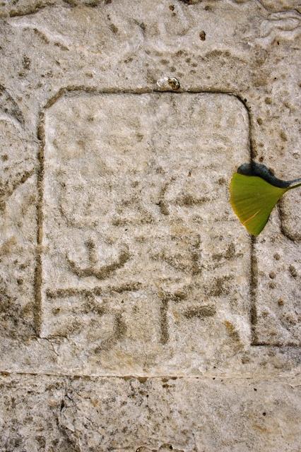 """十字寺遗址上的无名碑一座,碑文模糊难辨,碑额""""万古流芳""""和银杏叶在一起很小清新"""