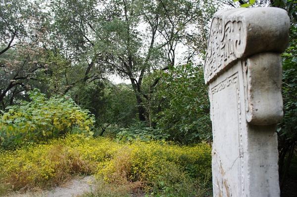 碑的A面已经被毁得啥也木有了,全是各种游客的即兴遣怀之辞