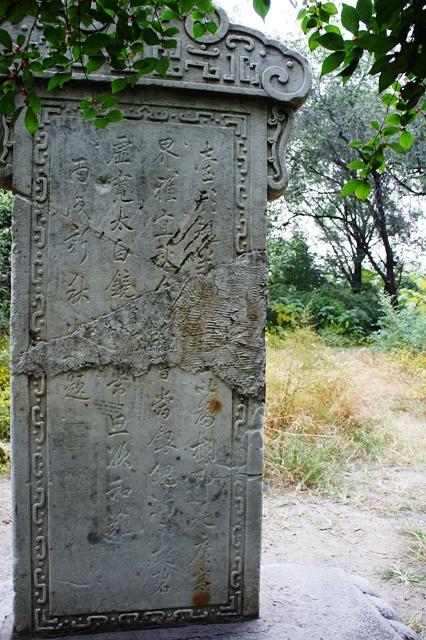 身残志坚的碑体很好地配合了百折不挠的诗歌爱好者情操