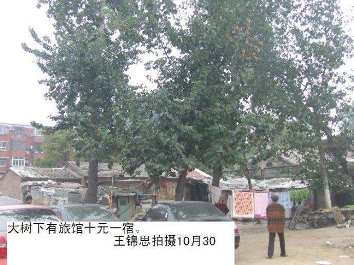 北京有群最苦难的中国人
