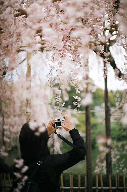 秋末注意春捂秋冻