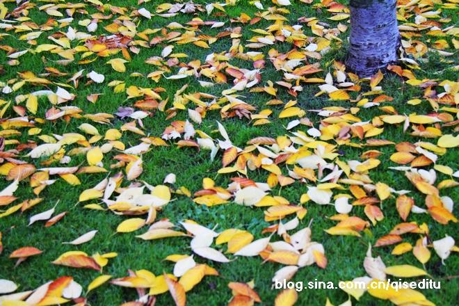 哥本哈根,秋意深浓三十幅