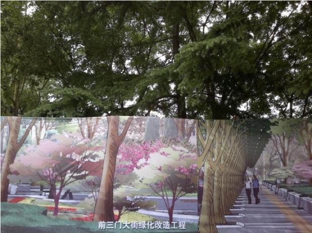"""北京""""删""""树的水平"""
