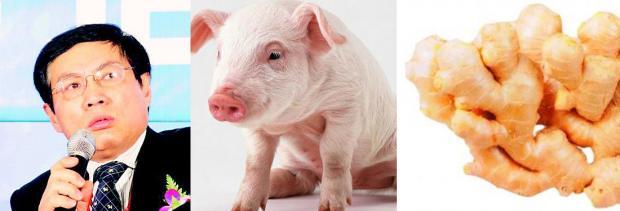 开发商、猪肉、与姜农