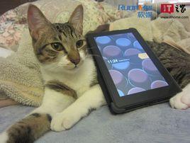 从猫买书看美国亚马逊的服务