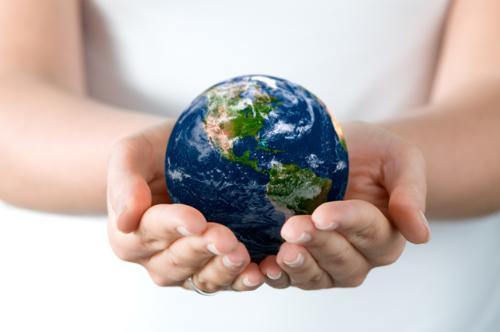 全球互动中的中国民间环保组织