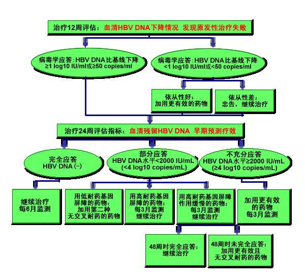 亚太地区乙型肝炎治疗指南推荐(9):治疗期间效果不好怎么办?