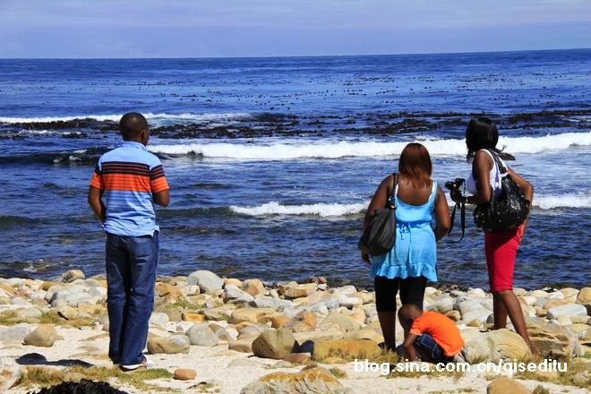 【南非】好望角,一路向南
