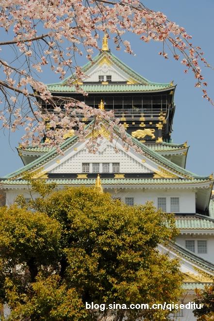 【日本】品行之旅,春天到日本来看樱