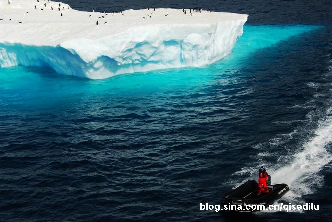 【南极】保利特岛的狂欢