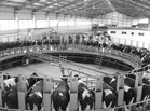 牛奶传统生产的困局