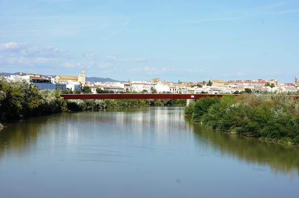 """洛尔卡诗云:""""瓜达尔基维尔河,长着石榴色的大胡子"""",想来这些草再晚些时候会变成红色"""