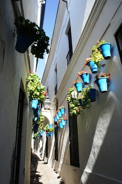 正宗花巷(Calle de los Flores),前天拍的是另外一条小巷,被晃点了。。。