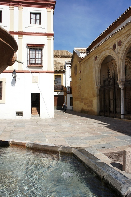 马驹广场上喷泉蓄水池里的水,清得我都想当一匹可以悍然当街洗澡的小马驹了