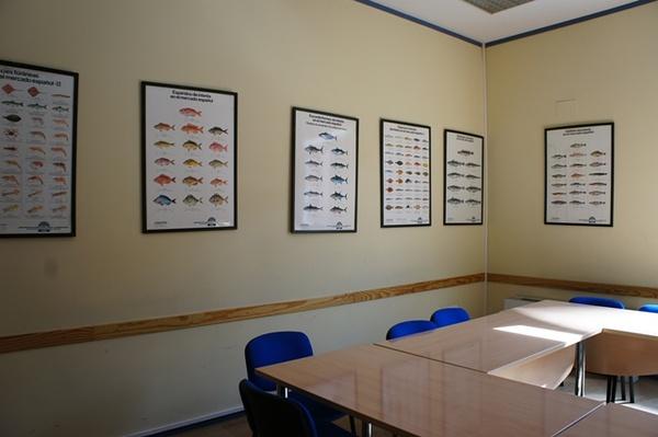 """这间是""""海鲜教室"""",墙上全是教学生识别各种鱼虾的教学图。"""