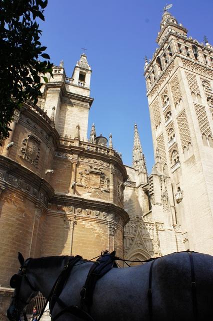 大天主堂和马