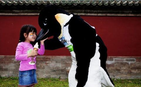 中国动物保护:希望在年轻一代