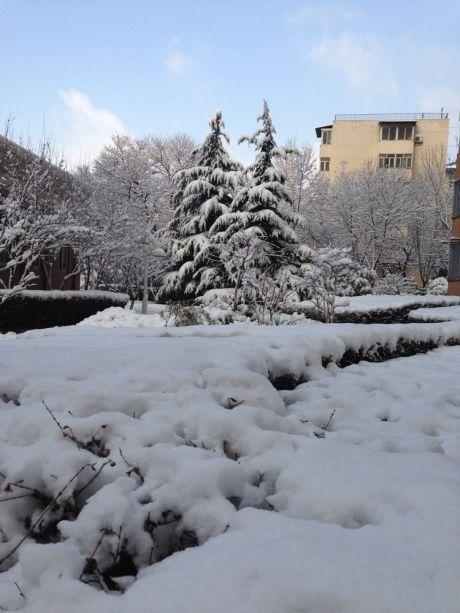 惊喜首都瑞雪