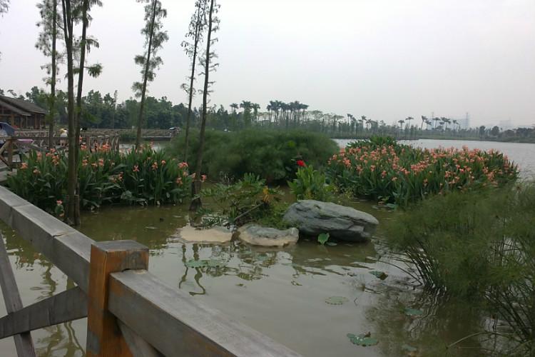 I Shoot (海珠湖公园)