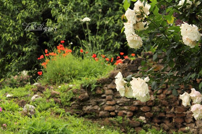 [转载]【意大利】到全世界最浪漫的花园去踏青