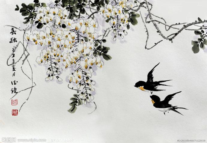长春南湖老宅的燕子