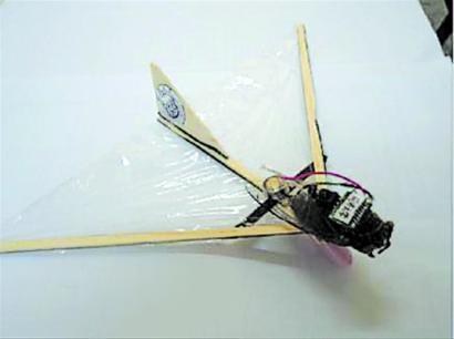 同济大学研制出知了微型飞行器