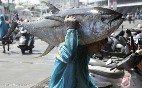 阿根廷腐败官员助长中国渔船非法捕捞