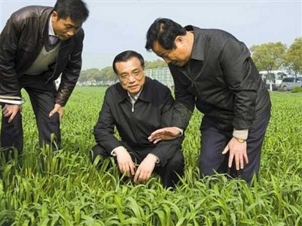 干农家粗活,寻学业优势