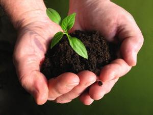 [读书笔记] 转基因、农业和环保