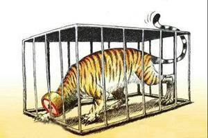 把油老虎关进笼子