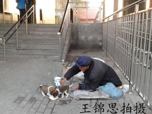 """2013年,街上的""""中国梦"""""""
