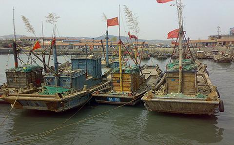 公海鱼类减少,中国面临危机