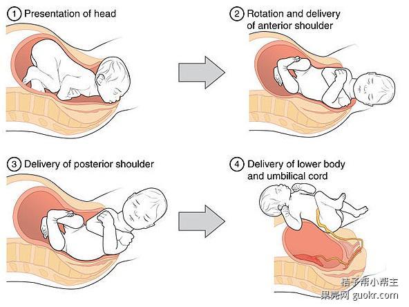 怀孕需要改变什么(7)——运动小灶篇