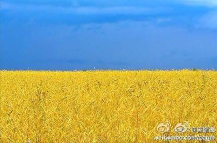 乌克兰如何且行且珍惜?